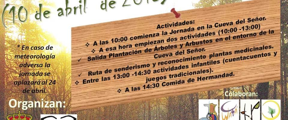 Celebración del Día del Árbol (10 de abril)