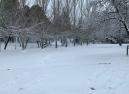 Huétor Santillán y el Parque Natural de la Sierra de Huétor amanecen de blanco