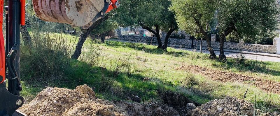 El Ayuntamiento planta árboles en la zona del Camino del Nacimiento