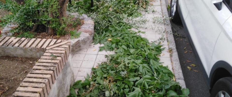 Limpieza de calles en Huétor Santillán