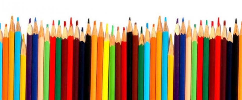 Resolución Monitor de acompañamiento escolar