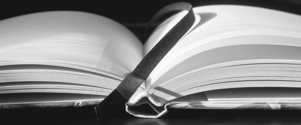 Presentación del primer  libro de Poesía de nuestro vecino Raimundo Iáñez