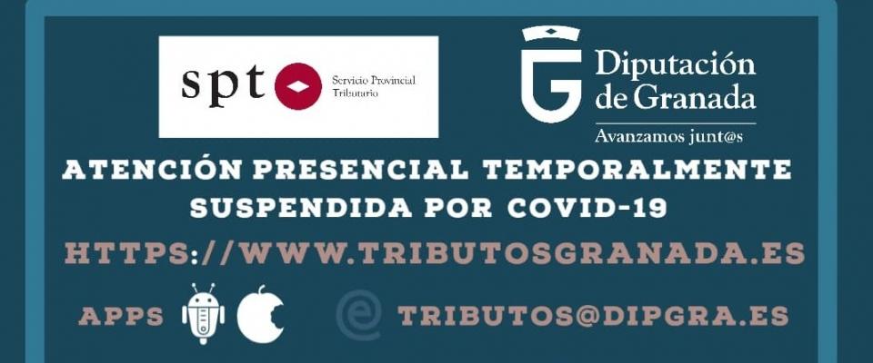 Información del Servicio Provincial Tributario (SPT)