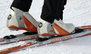 El Ayuntamiento organiza un viaje a Sierra Nevada para esquiar