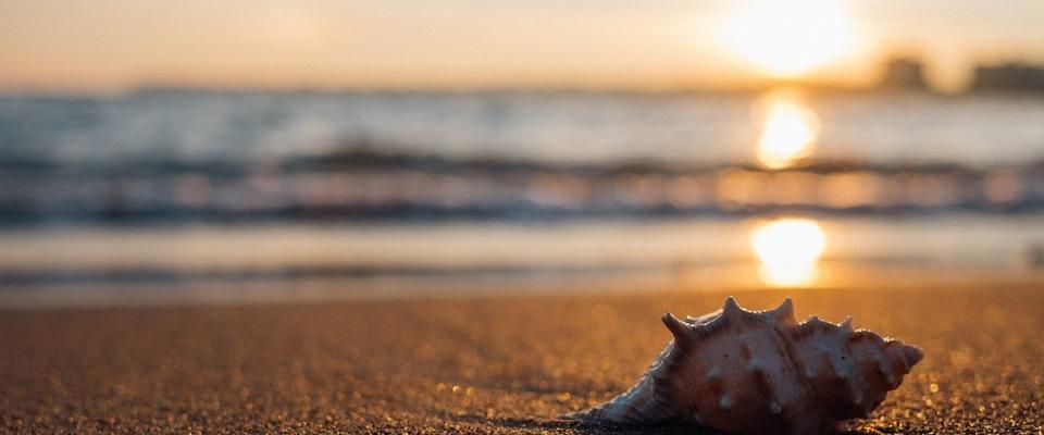 El Ayuntamiento organiza un viaje a la playa el 25 de julio