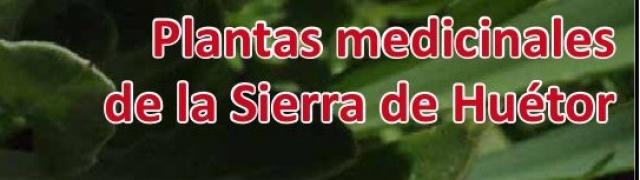 Recordatorio Primavera Cultural en Huétor Santillán