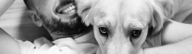 II Campaña de recogida de alimentos para animales en Huétor Santillán