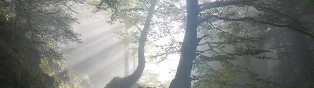 El V Trail Sierra de Huétor se celebrará el 1 de abril