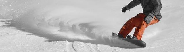 Viaje organizado a Sierra Nevada (Campeonatos del mundo de FreeStyleSki / Snowboard)